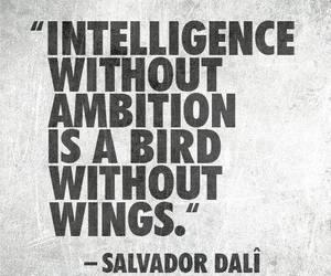 ambition