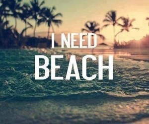beach, need, and quote image