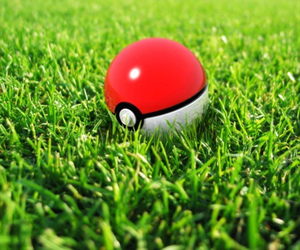 pokemon, pokeball, and grass image
