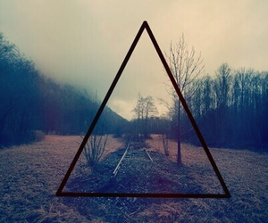 cool, forest, and hipster image