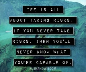 life, nature, and risk image
