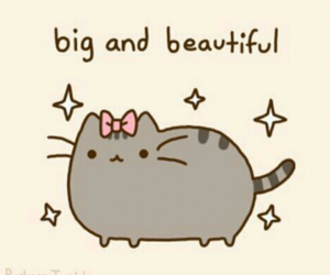cat, pusheen, and beautiful image