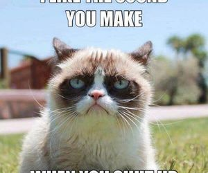 funny, grumpy cat, and shut up image