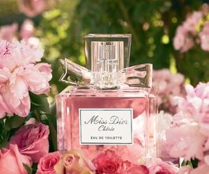 perfume, dior, and pink image