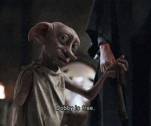 dobby, harry potter, and free image