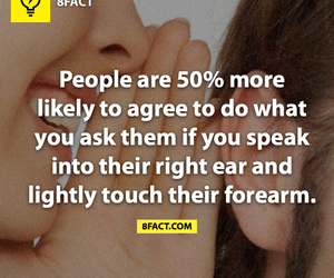 fun facts, facts, and weird facts image