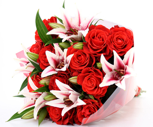 beautiful, red roses, and flowers image