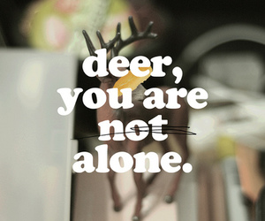 alone and deer image