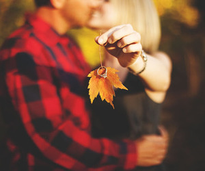 autumn, photography, and cute image