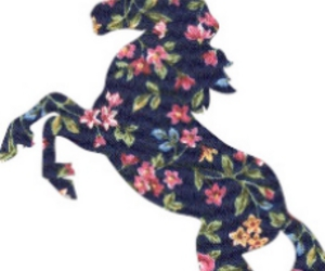 floral and unicorn image