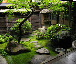 japan, garden, and japanese garden image