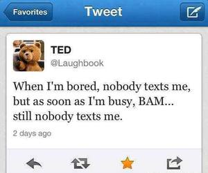 TED, text, and funny image