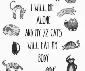 cat, alone, and die image