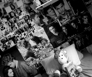 crepusculo, harry potter, and insanity image