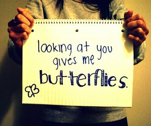 butterflies, in love, and looking image