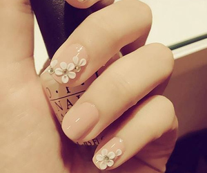 beauty, color, and nail image