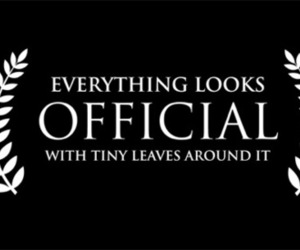 funny, official, and leaves image