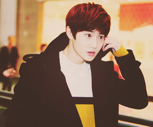 suho, exo-k, and exo image