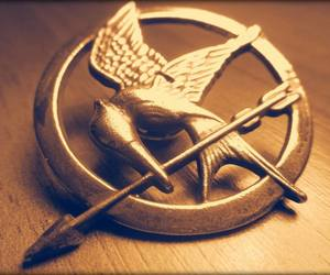 movie, symbol, and the hunger games image