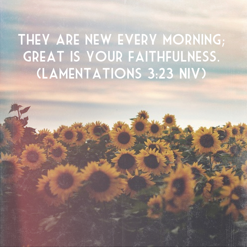 They are new every morning great is your faithfulness lamentations 3 23 niv