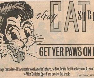 punk, rockabilly, and stray cats image