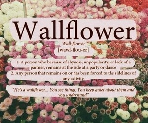 wallflower, quote, and shy image