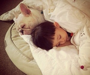 dog, cute, and child image