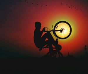 bike, bird, and nature image