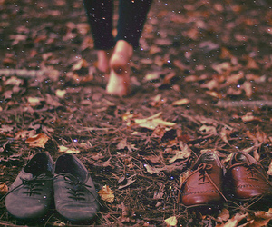 shoes, autumn, and leaves image
