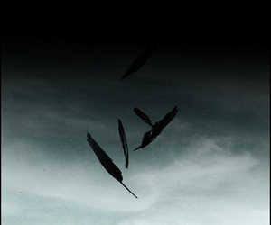 angel, silence, and hush hush image