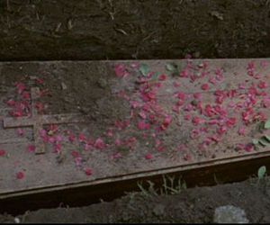 coffin, flowers, and funeral image
