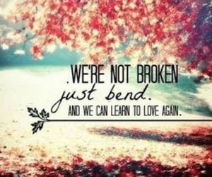 love, broken, and bend image