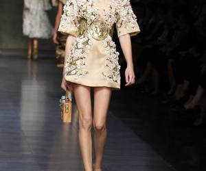 dolce and gabbana, fashion, and spring summer 2014 image