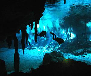 water, riviera maya, and cenote image