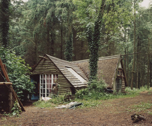 forest, house, and cottage image