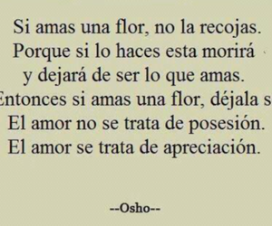 love, frases, and text image