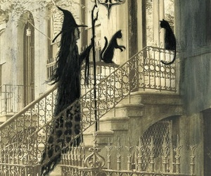 black cat, house, and spells image