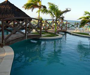 photography, luxury, and pool image