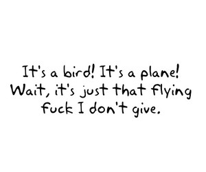 bird, fuck, and quote image