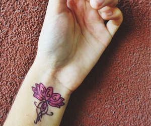 fiore, flower, and lotus image