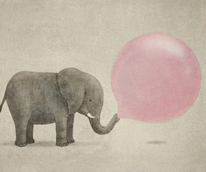 elephant, pink, and animal image