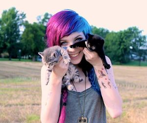 cat, hair, and kitty image