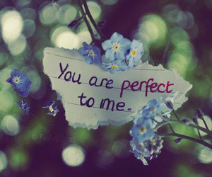 perfect, love, and flowers image