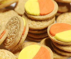 oreo, Cookies, and autumn image