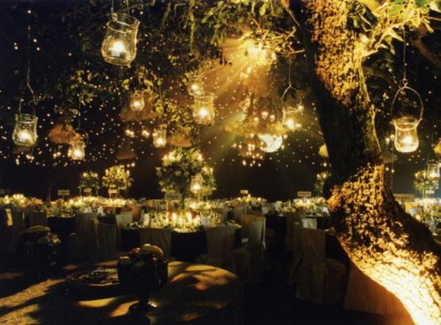 Fairy light trees weddings uploaded by mirage aloadofball Image collections