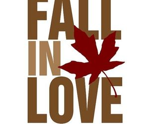 fall, autumn, and love image