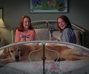 movie, lindsay lohan, and dog image