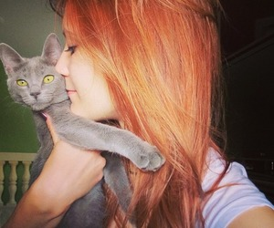 cat, redhair, and cool image