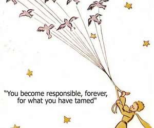quotes and the little prince image