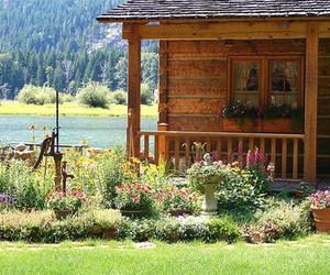 amazing, flowers, and house image